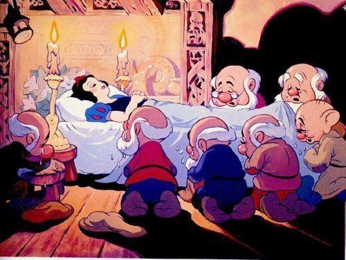 Blanche Neige et les 7 nains. 11db5547